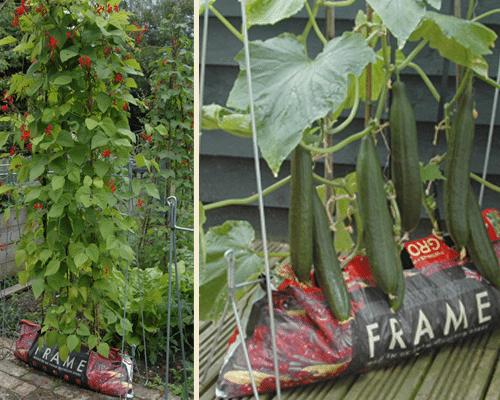 Grow bag frame foto 9