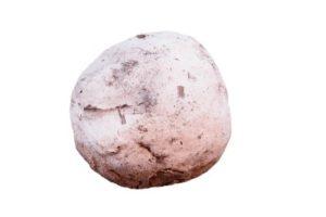Bokashi EM Vijverballen-0