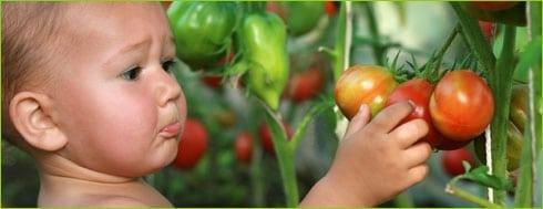 Kind met tomaat