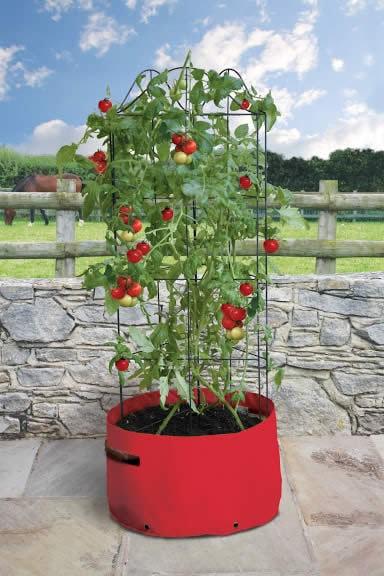 Tomaten kweekzak met klimrek-0